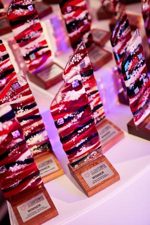 Customer Experience Awards 2015