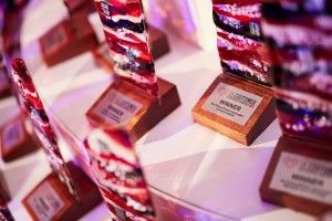 How I Won without even Entering the UK Customer Experience Awards
