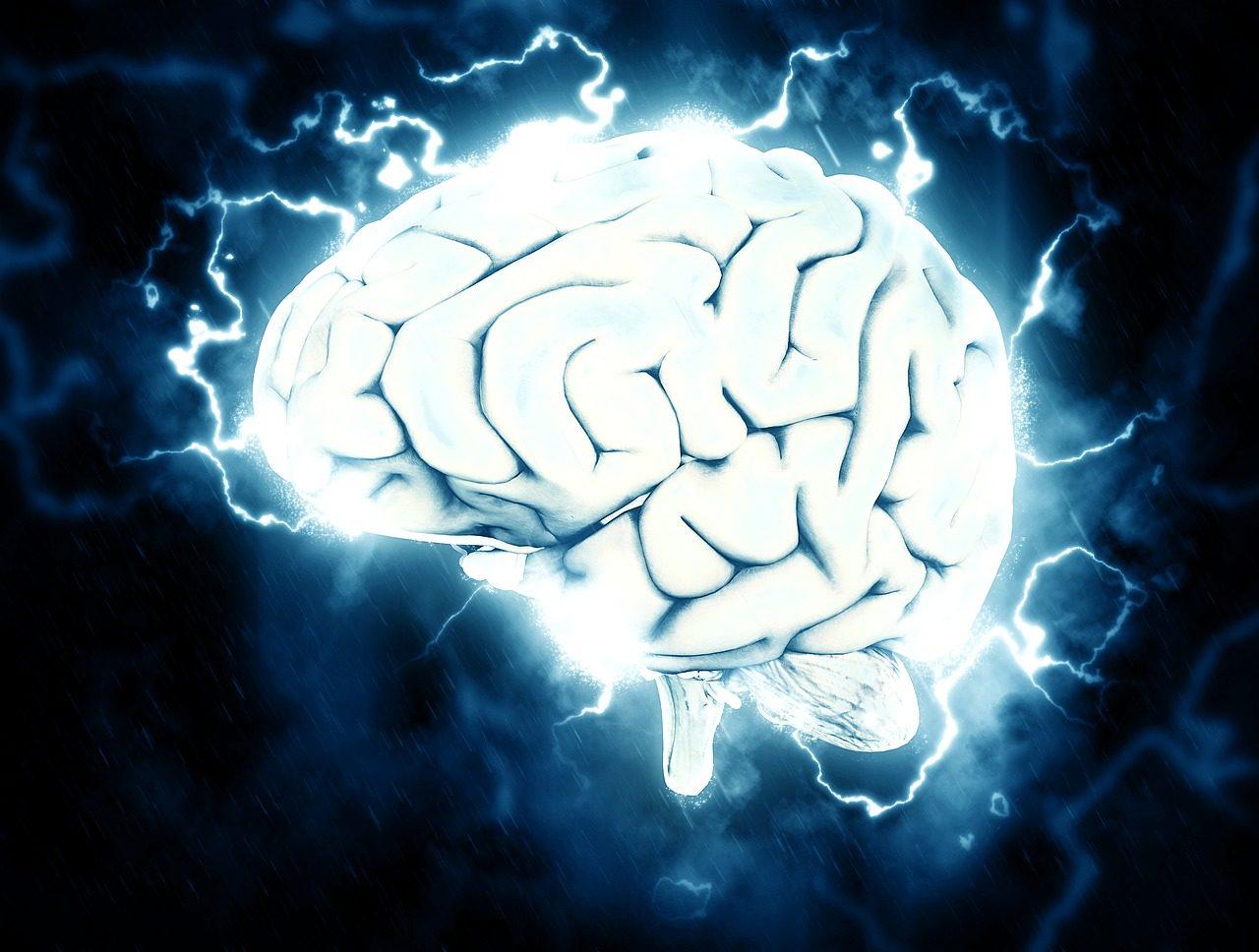 brain-1845962_1280-1280x968.jpg