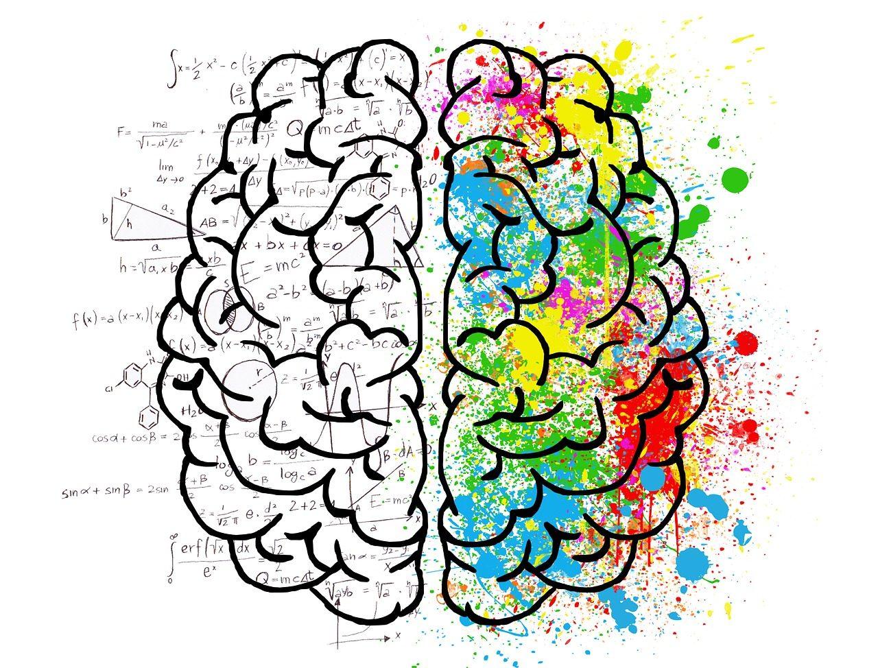 brain-2062057_1280-1280x974.jpg