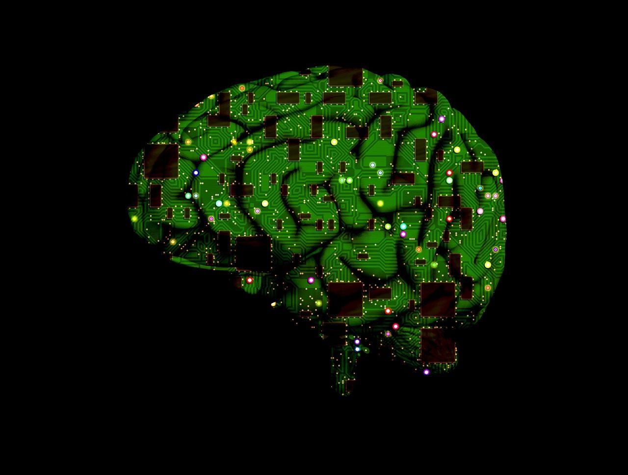 brain-1845944_1280-1280x968.jpg
