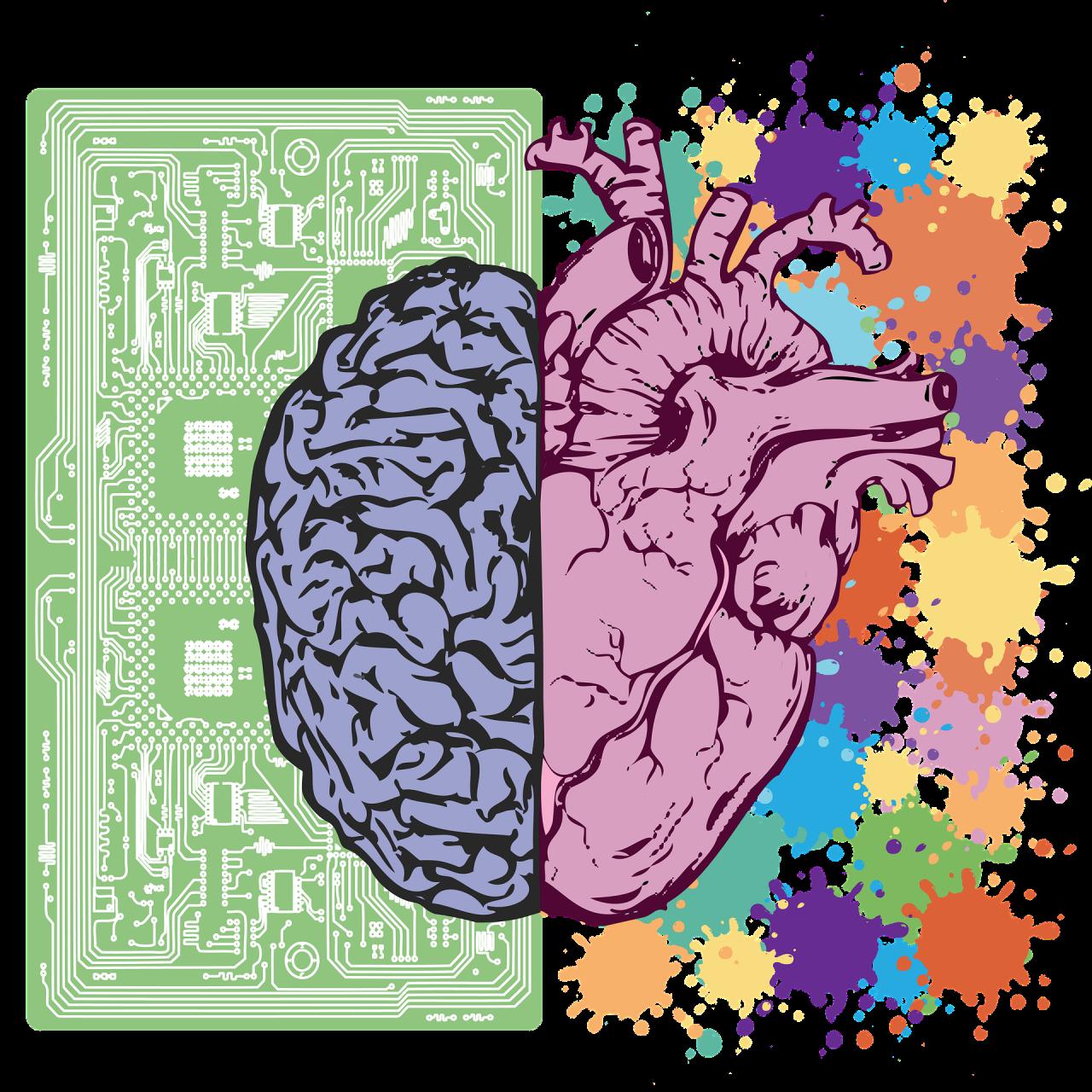 brain-3017071_1920-1280x1280.png