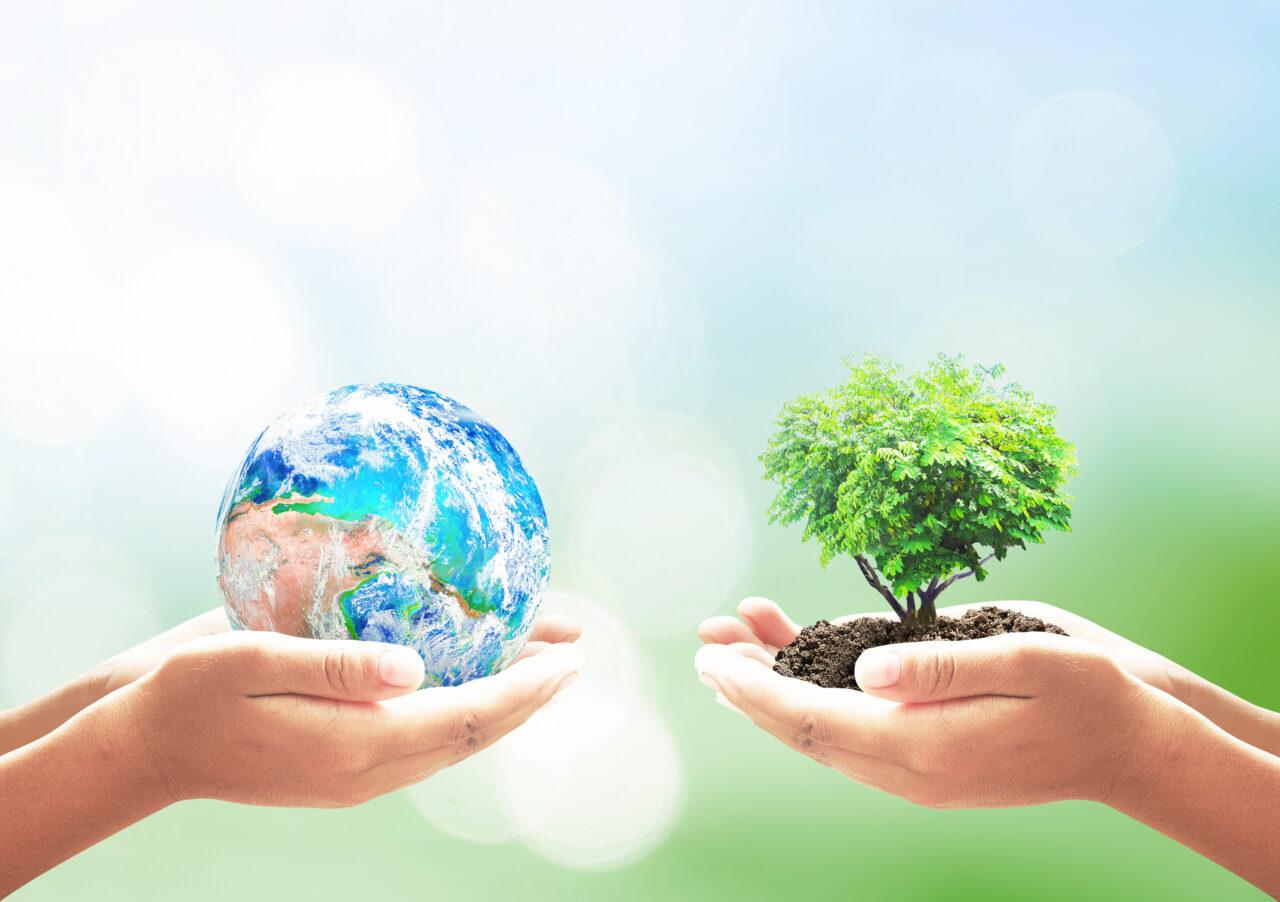 sustainable customer experience