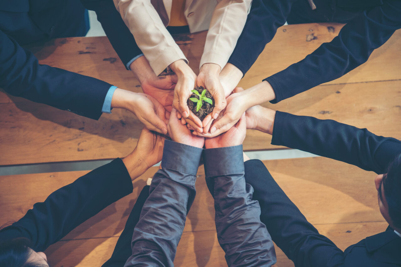 an image showing sustainable customer satisfaction with people holding a plant in their hands.
